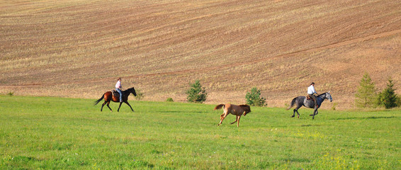 Czech countryside, people riding horses