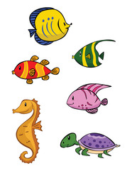 Baby Sea Animal Collection