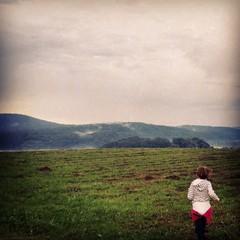 Meadow girl landscape