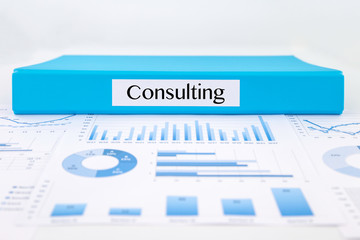 Consulting documents, graphs analysis and business report