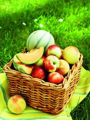 Panier de pommes et melons