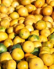 Yellow lemons from Sicily for sale at the local market