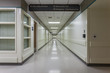 Corridor in a modern hospital. - 73456565