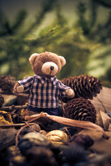 Christmas coming teddy bear green conifers cones