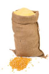 Sack with corn grains and flour.