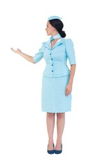 Pretty air hostess showing with hand