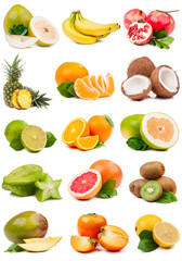 large set of fruit isolated