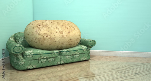 Couch Potato On Old Sofa - 73463513