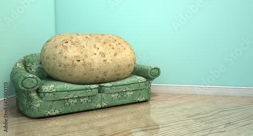 Leinwanddruck Bild Couch Potato On Old Sofa