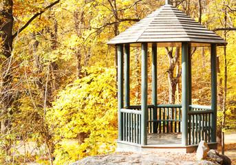 Old arbor in park