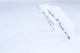 Windshield wipers covered in snow