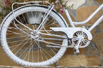 Rear wheel bicycle