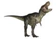 Leinwanddruck Bild - Dinosaur Tyrannosaurus