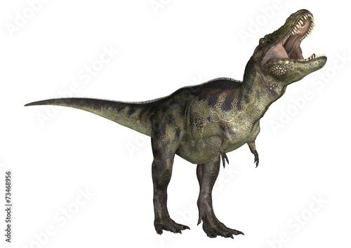 Leinwanddruck Bild Dinosaur Tyrannosaurus
