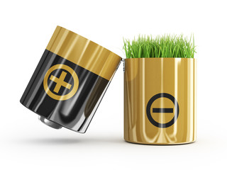ecology concept a net energy. A battery and a grass