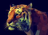 Fototapety Low Poly Vector Tiger