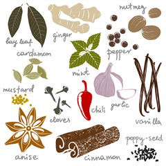 stylized spices