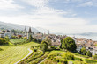 Leinwanddruck Bild - Stadt Zug, Altstadthäuser, Aussichtspunkt, See, Sommer, Schweiz