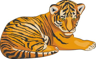 Vector tiger.