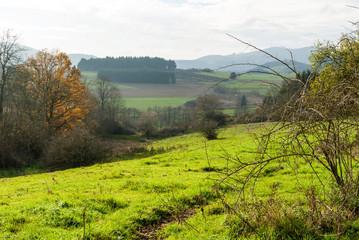 Blick vom Gelängeberg über das Gelängebachtal