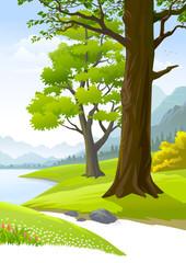 Serene peaceful trees next to a calm lake