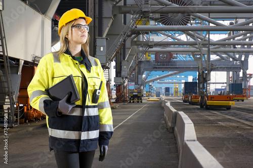 Industrial Harbor inspector - 73481958