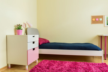 Cute room with pink carpet