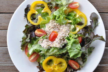 Tuna salad with many vegetables on white plate, top view.