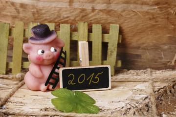 glücksschwein - 2015