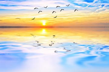 cuando el cielo y el agua se juntan