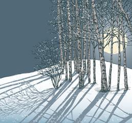 winter frosty night
