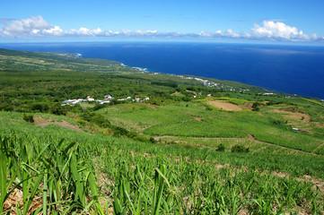 La Réunion - Matouta