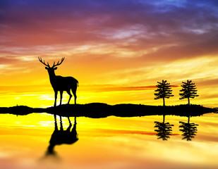 El ciervo solitario del lago