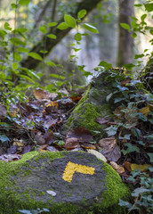 Yellow arrow on a stone in a long distance footpath