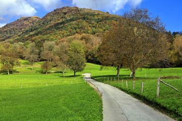 Autumn colors in Arosio, Switzerland.