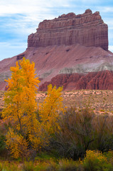Wild Horse Butte Peak of the Fall in Utah Vertical Composition