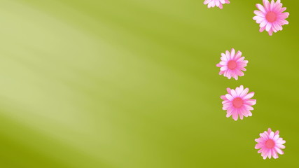 Pink flowers on Green Backdrop looping Animated Background