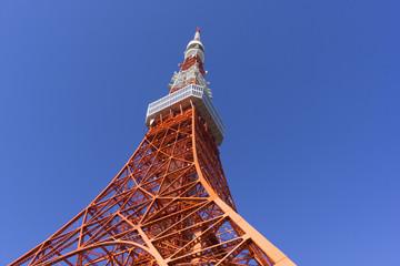 快晴青空 東京タワーを見上げる