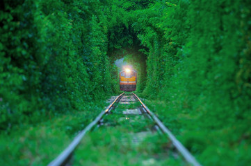 Train running in Natural tunnel