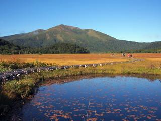 尾瀬ヶ原の池塘と至仏山