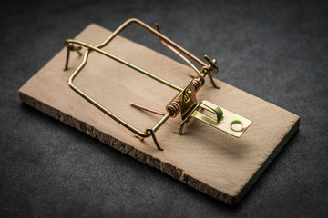 Cocked empty mousetrap on dark background.