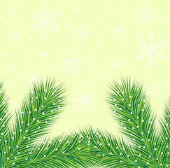 christmas background with the sprigs of fir-tree