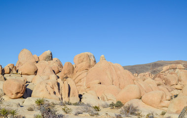 Jumbo rocks in Joshua tree national park