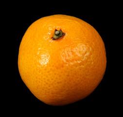 Tangerine on black background