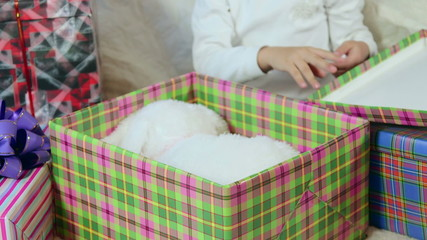 Child opens up wrapped gift box with soft toy close-up