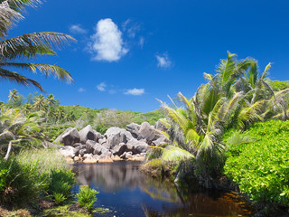 clear river in the Seychelles