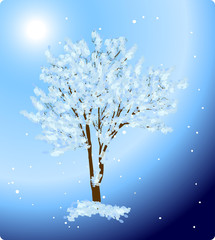 tree in snow on blue background