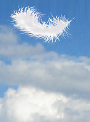 single feather on blue sky background