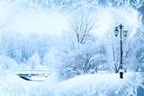 Fototapety Winter background, landscape. Winter trees in wonderland. Winter