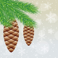 branch of christmas tree with  cones